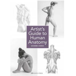 artist's guide to human anatomy civardi