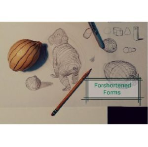 Lesson Eleven: Drawing With Concentric Lines